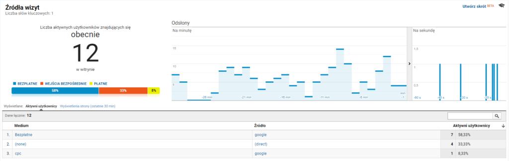 Raport Czas rzeczywisty (źródła wizyt) - Google Analytics