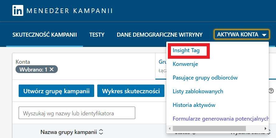 LinkedIn Insight Tag w aktywach konta na LinkedIn